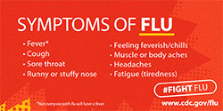 THE FLU KILLS
